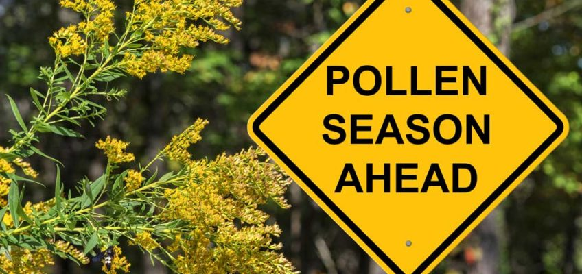 Anticipate Springtime Allergies Now